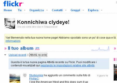flickr geni della comunicazione web